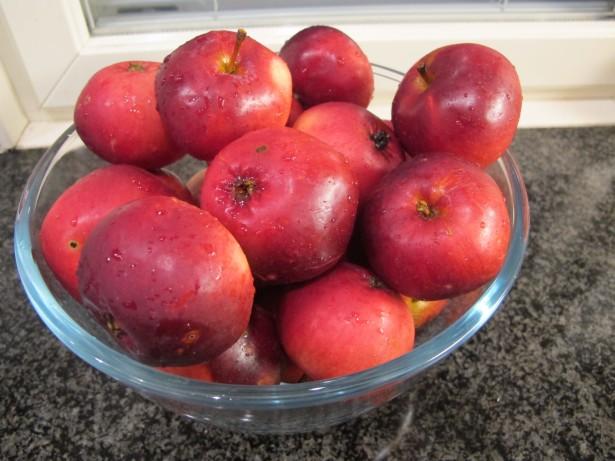 7.omenat_kulhossa