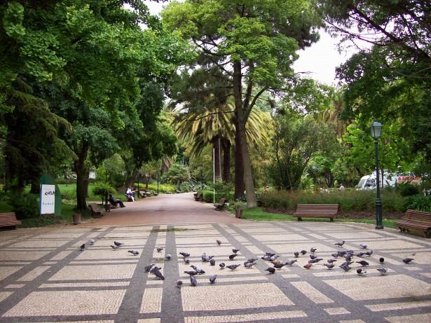 Jardim_da_Estrela_-_Lissabon