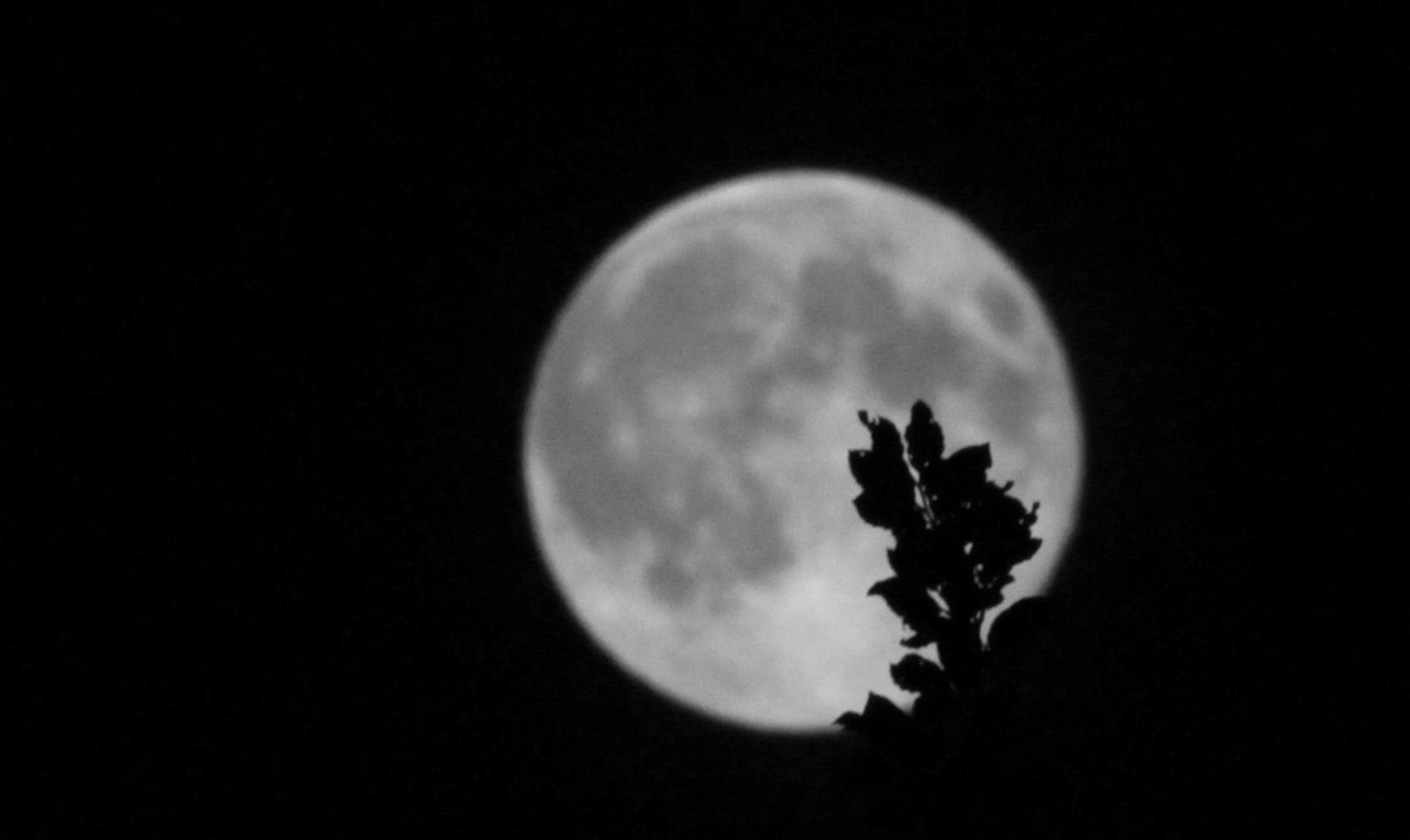 Laskeva Kuu