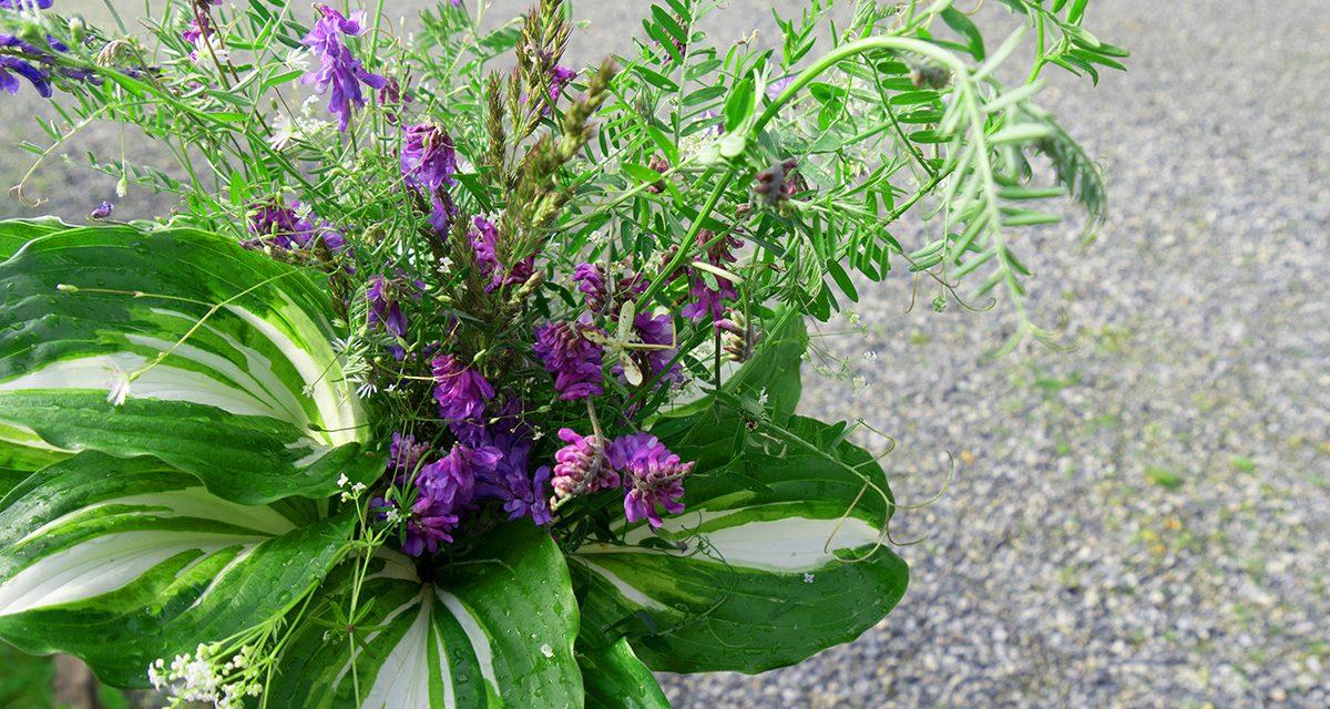 Kukkia maljakkoon