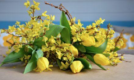 Helpot pääsiäiskukat