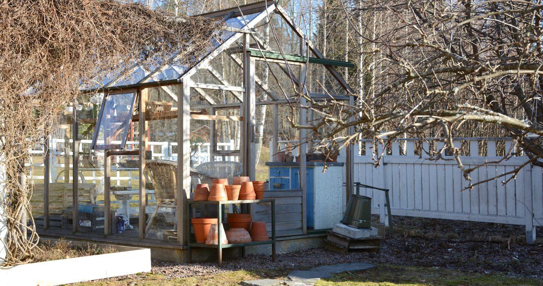 Kevätpuuhia: kasvihuoneen pesu