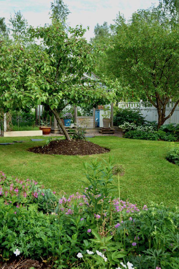 puutarha_omenapuu_kasvihuone