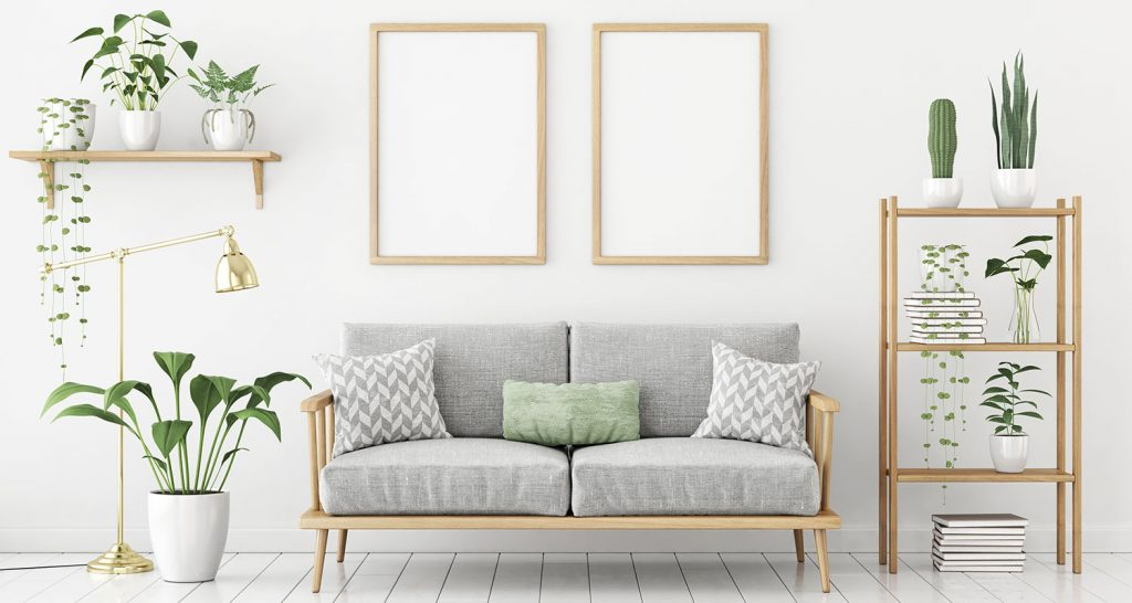 Trendikkäät ja hyödylliset huonekasvit ovat osa kodin sisustusta.