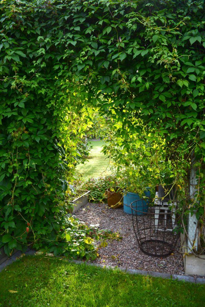 portti-puutarhaan